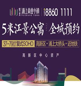 紫光浦上商业小镇:5米江景公寓